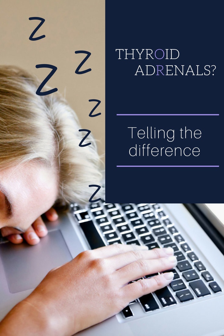 Blog title Adrenal fatigue or hypothyroid - difference.png